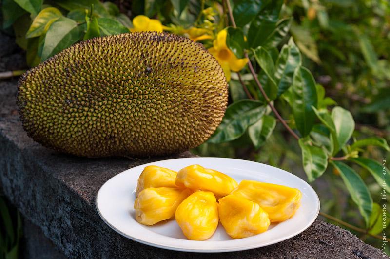 Джекфрут (Jackfruit)
