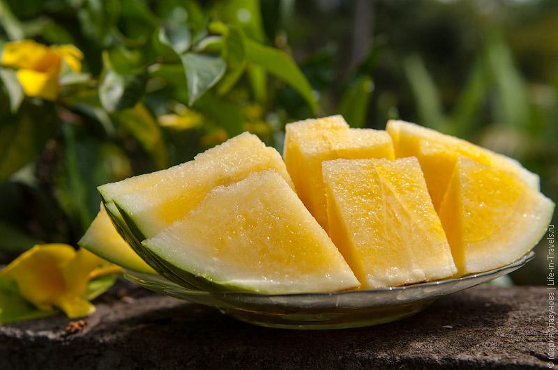 Желтый арбуз (Yellow Watermelon)