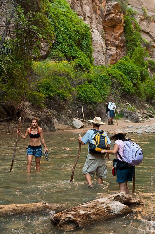 Река в парке Зайон