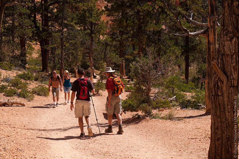 Прогулка по дну каньона