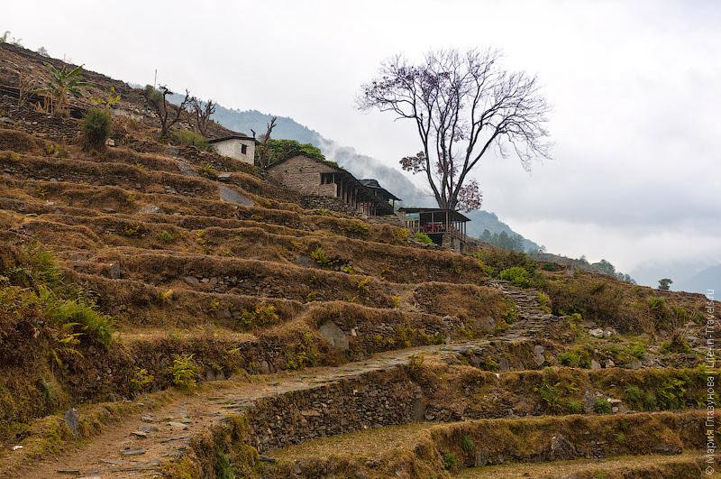Непальские поселения