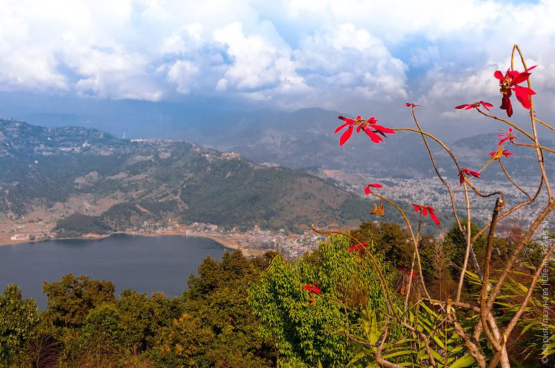 Вид на озеро и город, Покхара