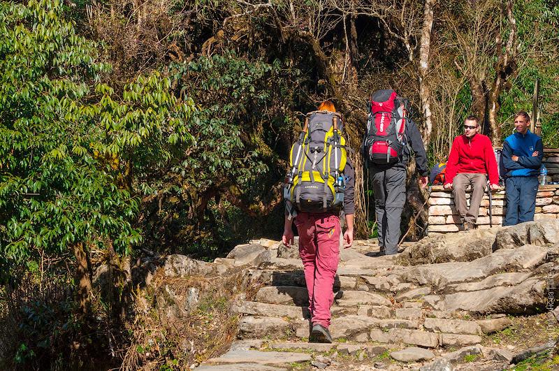 Треккинги в Гималаях