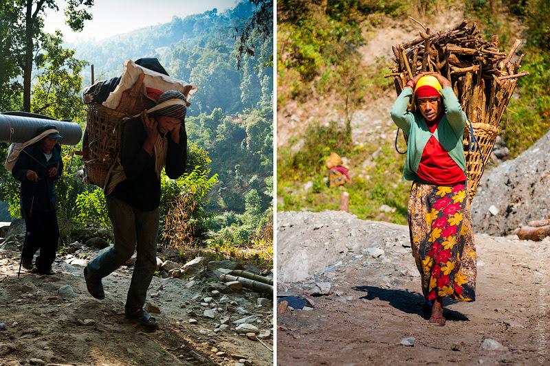 Непальские поттеры