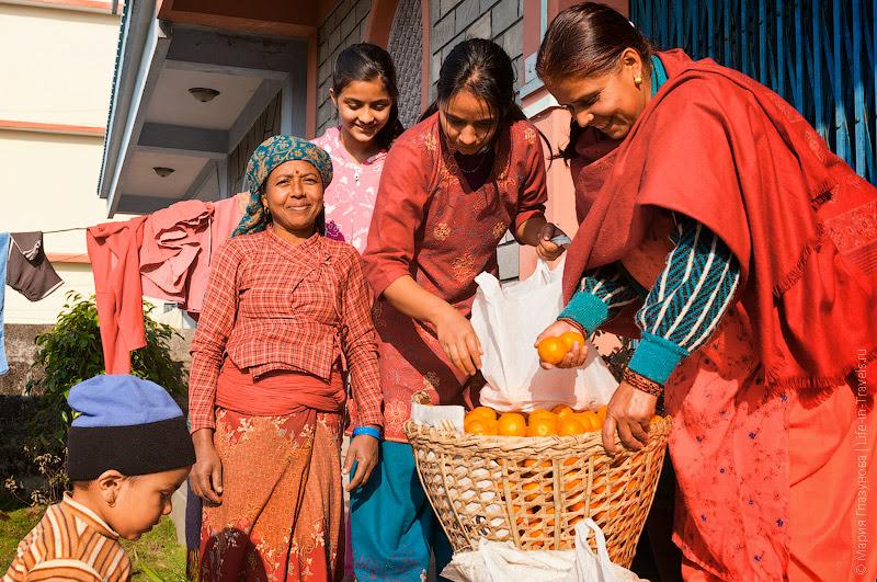 Непальские мандарины