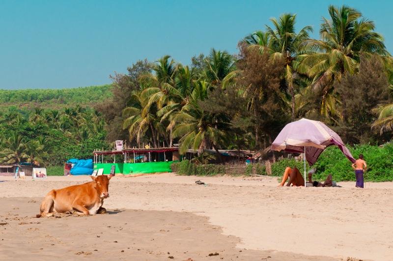 Пляжи в Гокарне