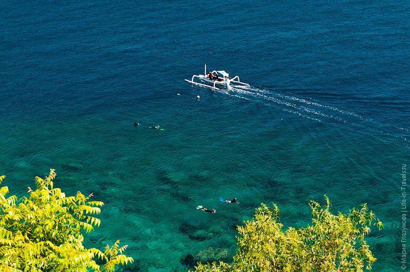 Снорклинг в Амеде на Бали