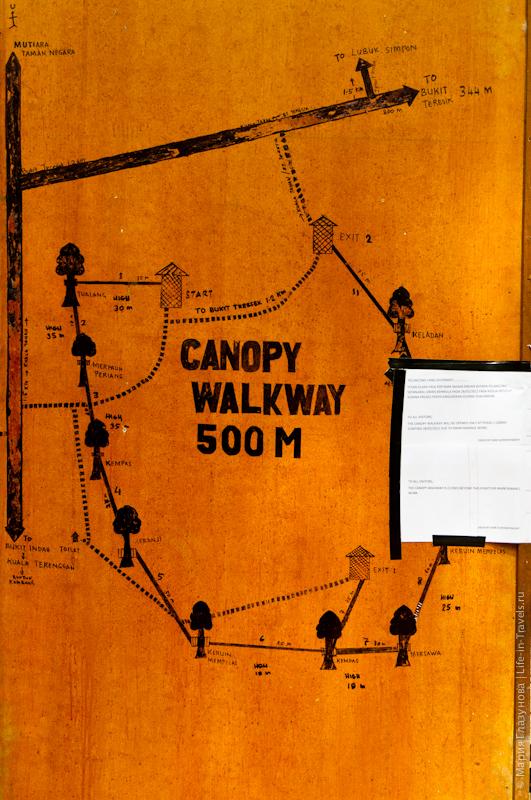 Карта Canopy Walkway