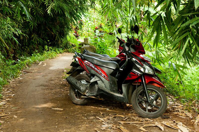 Скутер Honda Vario на Бали