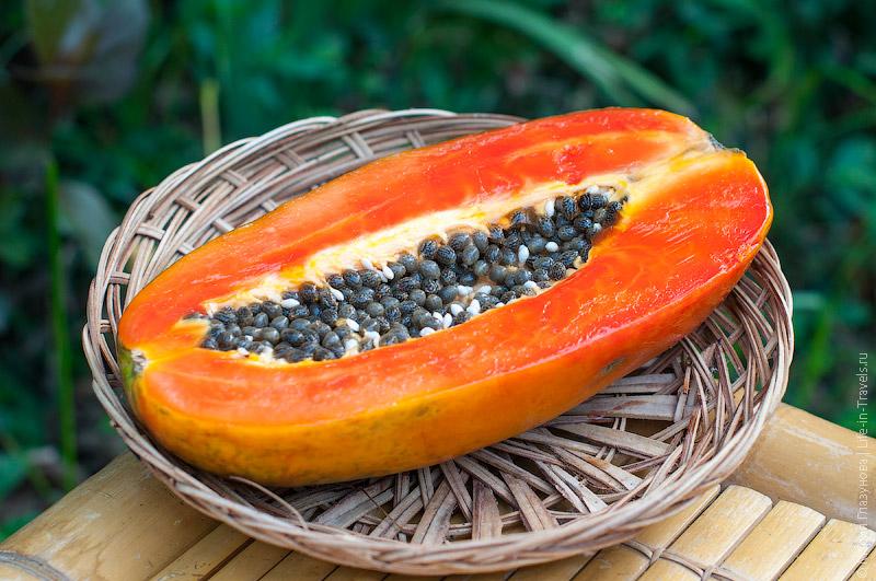 Папайя (Papaya)