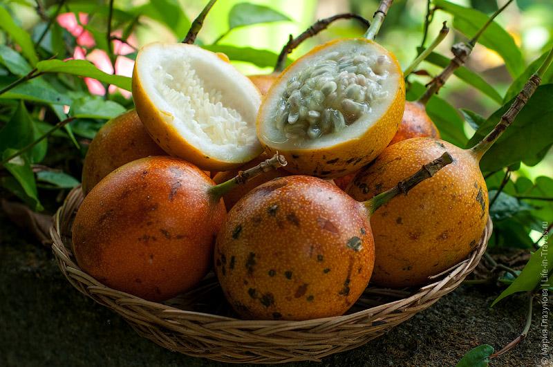 Маракуйя (Marakujya), он же Страстоцвет съедобный, или Пассифлора съедобная, или Гранадилла пурпурная