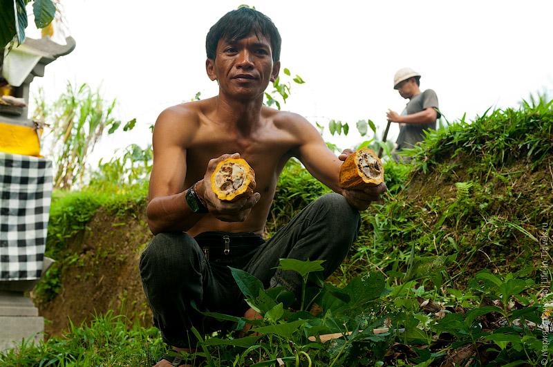 Работник фермы