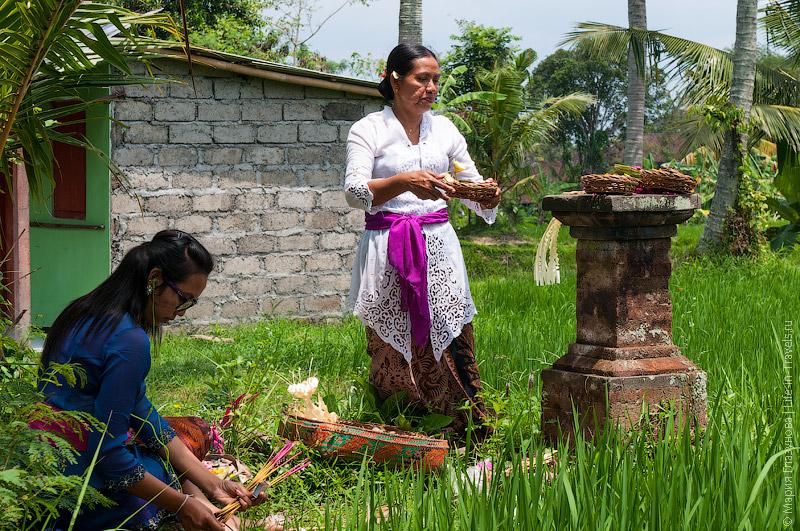 Алтарь на рисовом поле