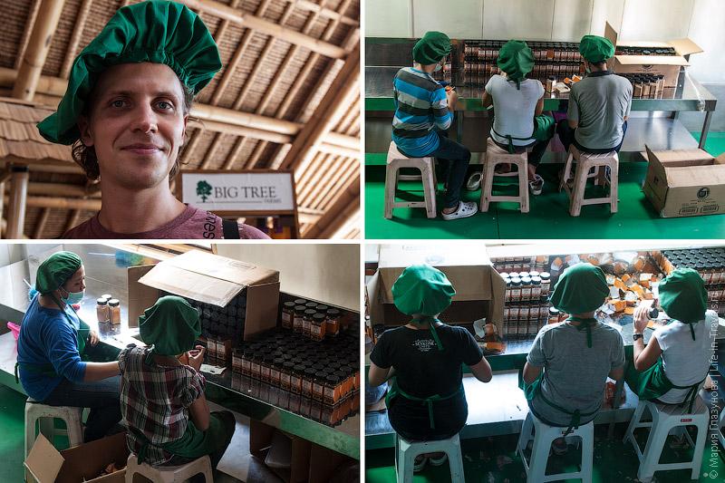Сотрудники в шапках и повязках