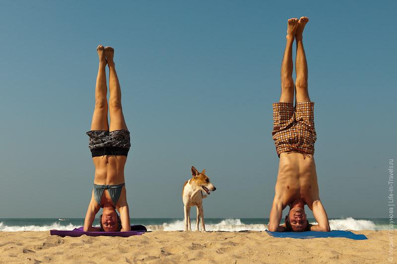 Йога в Варкале