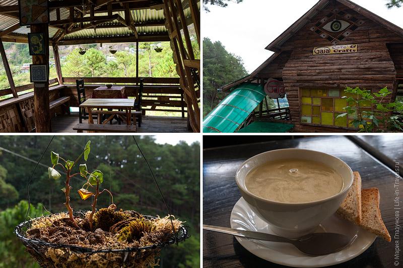 Органическое кафе Gaia