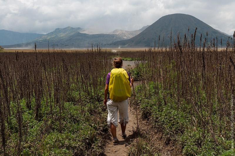 Долина парка Bromo Tenger Semeru