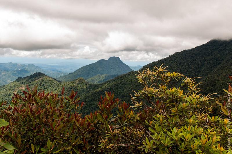Парк Кинабалу, Борнео