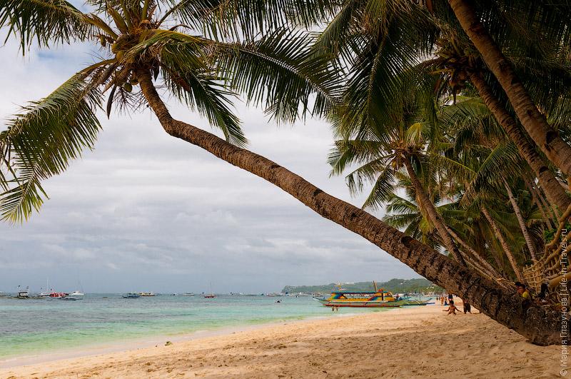 Пальмы на Белом пляже Боракая