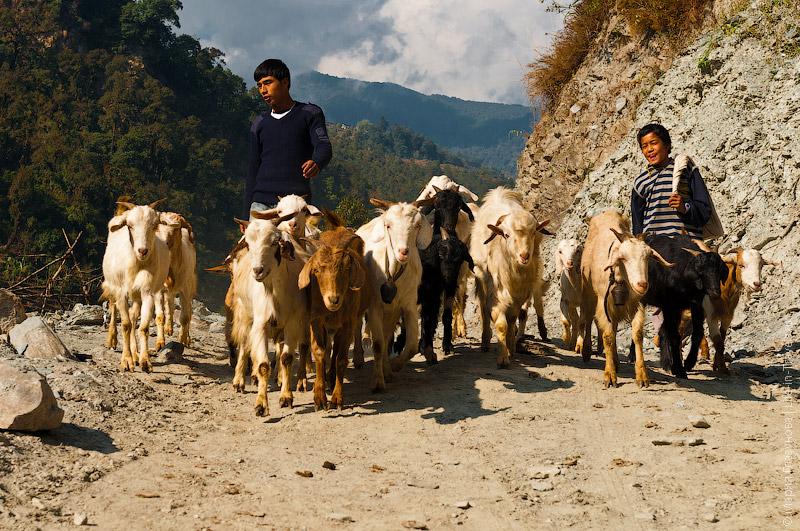 Непал – высокогорная страна
