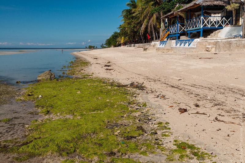 Пляж у отеля Casa de la Playa