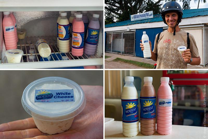 Norient  молочная фабрика в Думагете