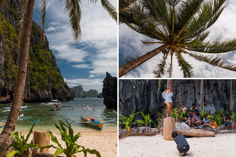 Фотосессия под пальмами