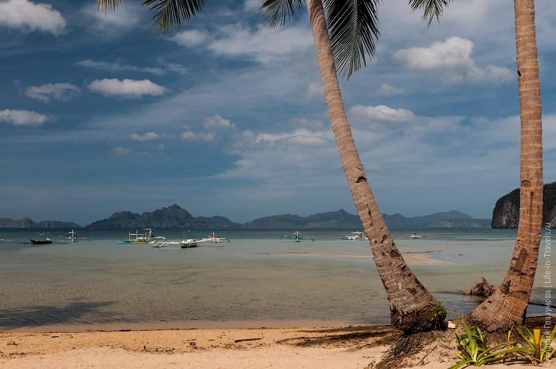 Пальмы на пляже Корон-Корон