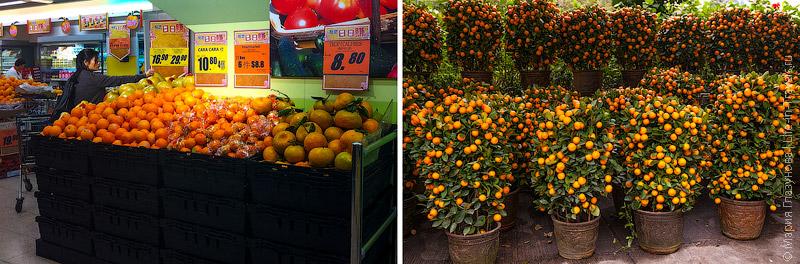 Закупки мандаринами