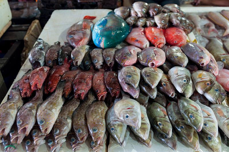 Рыба в Джимбаране