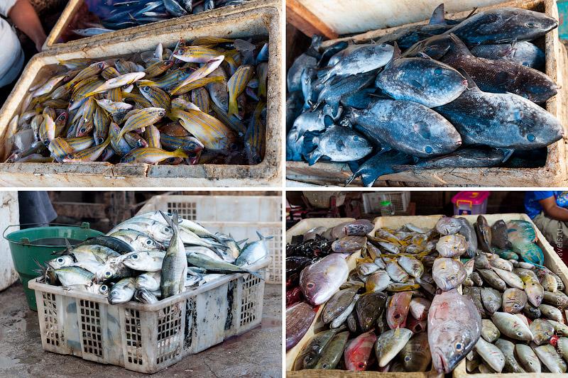 Рыба в ящиках