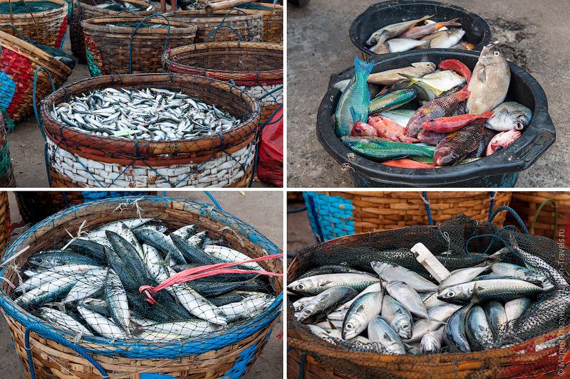 Корзины с рыбой