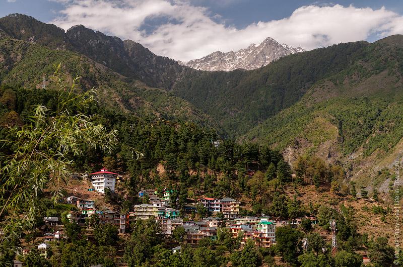 Вид на Гималаи из нашего окна