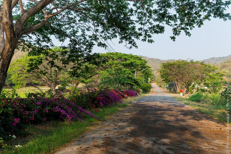 Пробежки в Хуа Хине