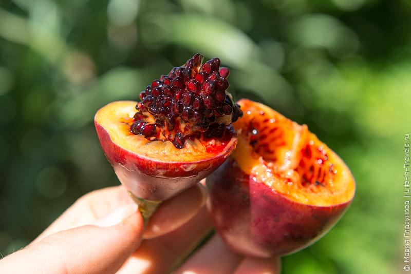 тропические фрукты на Бали