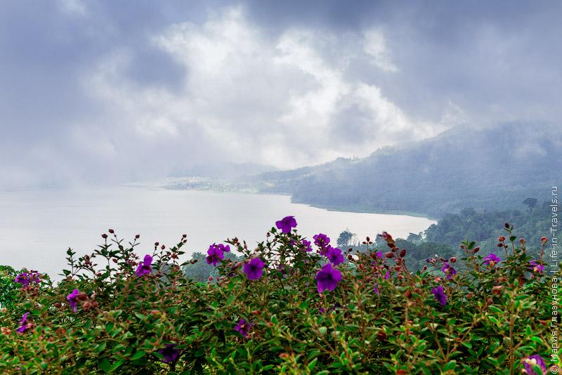 Озеро Буян.jpg
