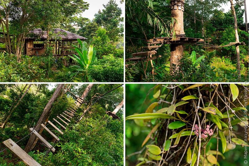Ко Панган  Just for fun  Canopy Adventure