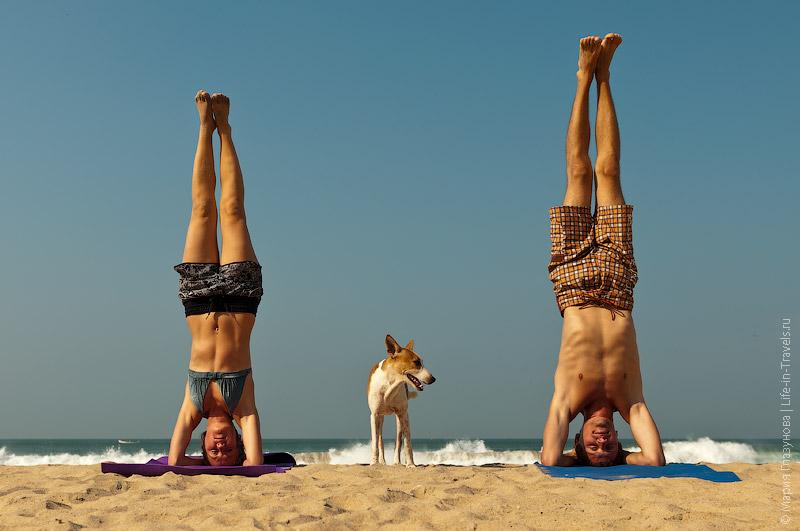 Йога в Индии