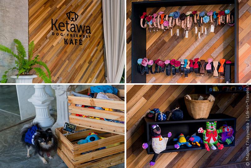 Ketawa Dog Friendly KAFE в Чиангмае, Таиланд