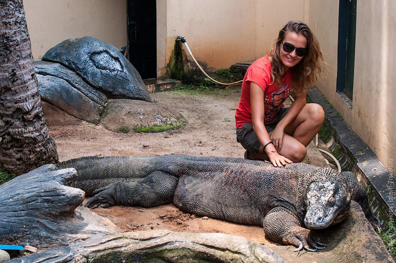 Зоопарк на Яве