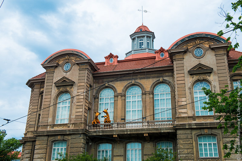 Музеи в Хельсинки
