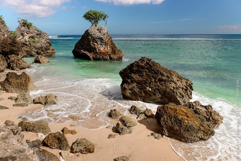 Природа на Бали.jpg
