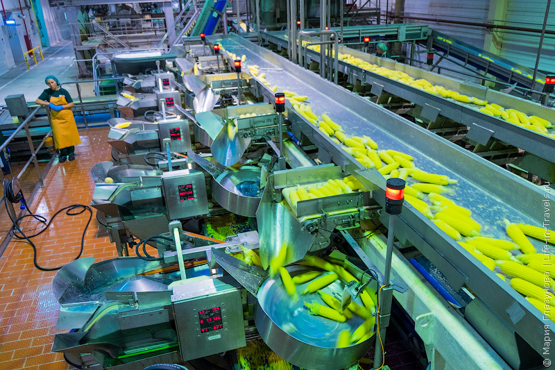 Завод Бондюэль (Bonduelle) в Тимашевске