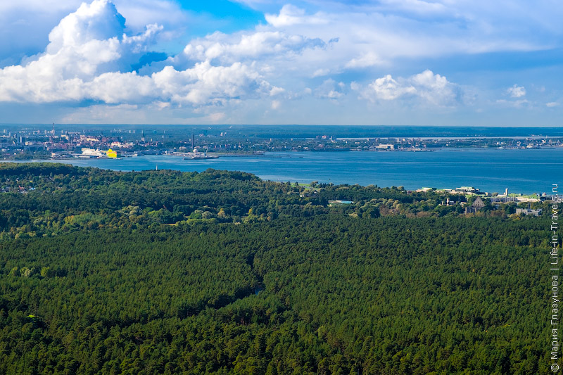 Таллинская телебашня (Tallinna teletorn)