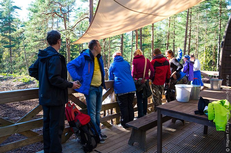 Северные олени в Финляндии