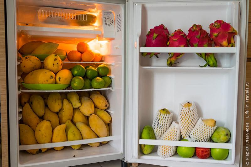 Наш холодильник на Самуи