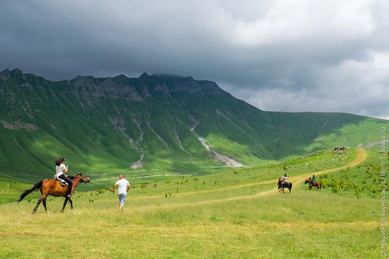 Лошади в Гудаури