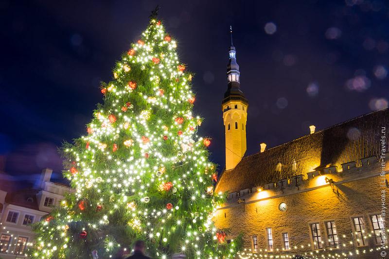 Рождественский Таллин, Эстония
